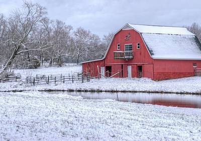 Animal Portraits - Red Barn in the Snow by Douglas Barnett
