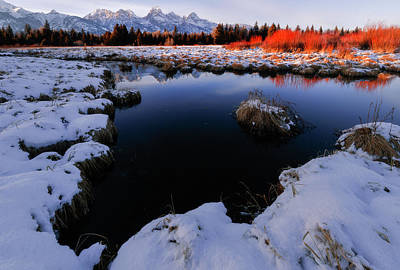 Summer Trends 18 - Red bushes on the Snake River by Murray Rudd