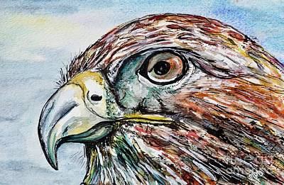 Animals Paintings -  Red Tailed Hawk -portrait painting by Patty Donoghue