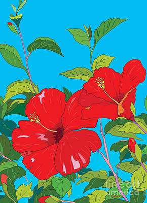 Royalty-Free and Rights-Managed Images - Red Hibiscus by John Clark