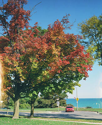 Photograph - Red Hot Fall in Milwaukee by Vincent Buckley