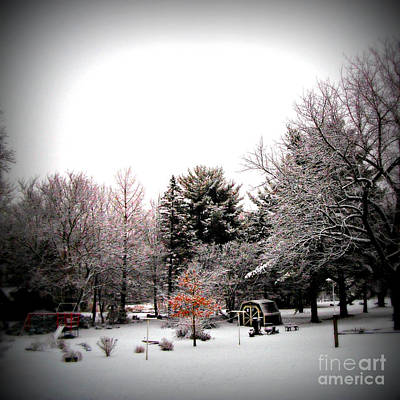Frank J Casella Royalty-Free and Rights-Managed Images - Red in the Wooded Winter by Frank J Casella