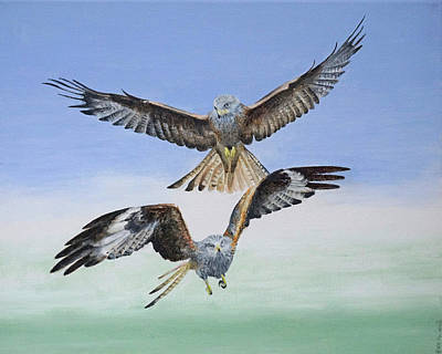 Animals Paintings - Red Kites by Alan Pickersgill