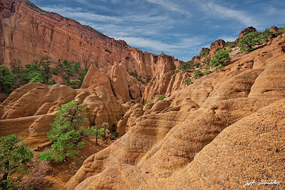 Photograph - Red Mountain Crater by Jeff Goulden