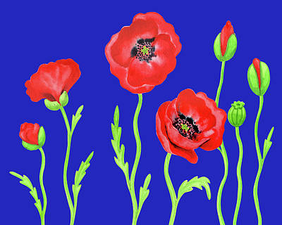 Royalty-Free and Rights-Managed Images - Red Poppies Blue Sky Watercolor Botanical Flowers by Irina Sztukowski