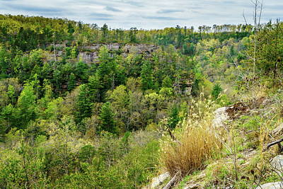 Pittsburgh According To Ron Magnes - Red River Gorge Geological Area by Alexey Stiop
