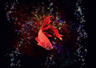 Animals Digital Art - Red Splenden Siamese Fighting Fish  by Scott Wallace Digital Designs