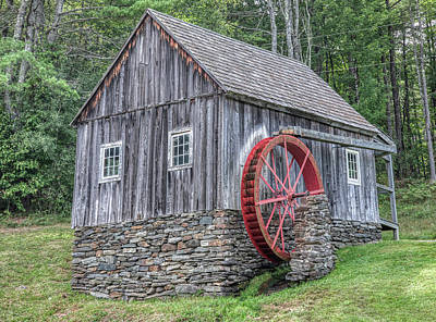 Animal Portraits - Red Waterwheel of Vermont by David Letts