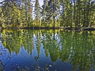 From The Kitchen - Reflections On The Wood River by Joyce Dickens