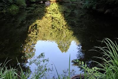 Photograph - Reflections by Shonda Mcbride