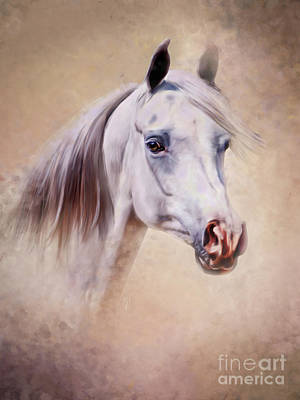 Painting - Regal Arabian Horse  by Michelle Wrighton