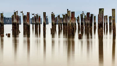 Photograph - Remantents of Old Fish Cannery Dock  by Tony Locke