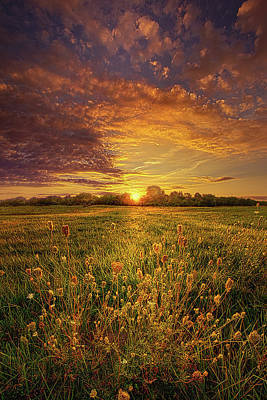Gaugin Rights Managed Images - Rendition Royalty-Free Image by Phil Koch