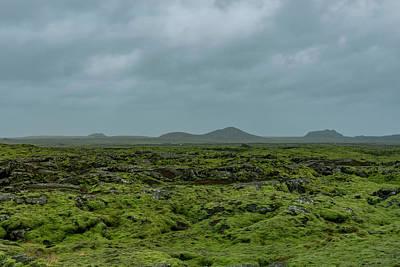 Owls - Reykjanes lava field by Giorgos Karampotakis