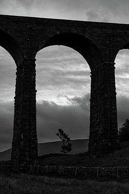 David Bowie - Ribblehead lone tree by Paul Madden