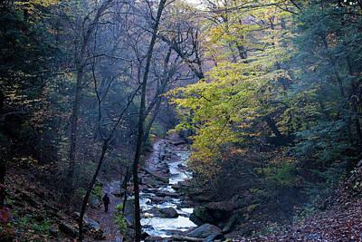 Photograph - Ricketts Glen State Park by Emmanuel Rondeau
