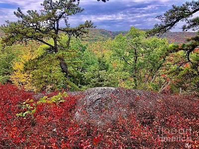 Photograph - Ridge Top by Cornelia DeDona