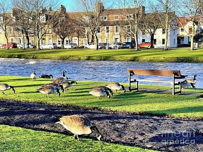 Claude Monet - River Esk with Ducks Musselburgh pr003 by Douglas Brown
