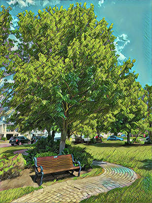 Surrealism Royalty-Free and Rights-Managed Images - Riviera Park Bench and Tree by Surreal Jersey Shore