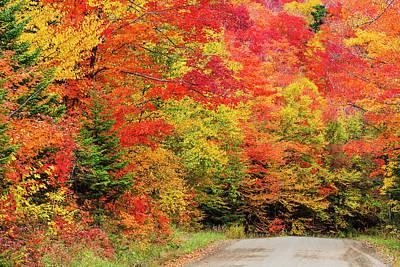 Vintage Automobiles - Roads End Fall Color by Alan L Graham