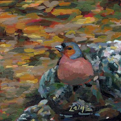 Painting - Robin by Nimrod Stark