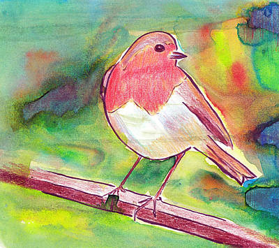 Drawing - Robin Redbreast by Tina Lewis