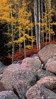 Celebrity Pop Art Potraits - Rocky Mountain autumn by Randall Roberts