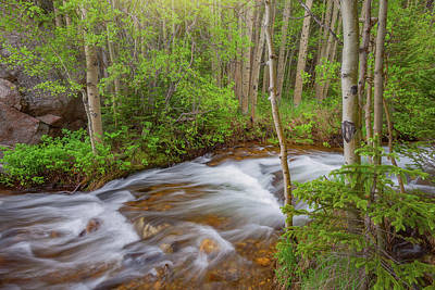 Royalty-Free and Rights-Managed Images - Rocky Mountain Stream by Darren White