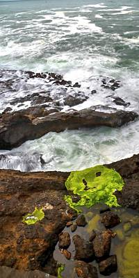 Jerry Sodorff Royalty-Free and Rights-Managed Images - Rocky Point Surf Lichen Tide Pool by Jerry Sodorff
