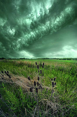 Nautical Animals - Rolling Through by Phil Koch