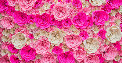 Royalty-Free and Rights-Managed Images - Rose, dark pink, light pink and white by Julien