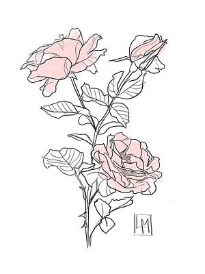 Black And White Ink Illustrations - Rose Heads by Luisa Millicent