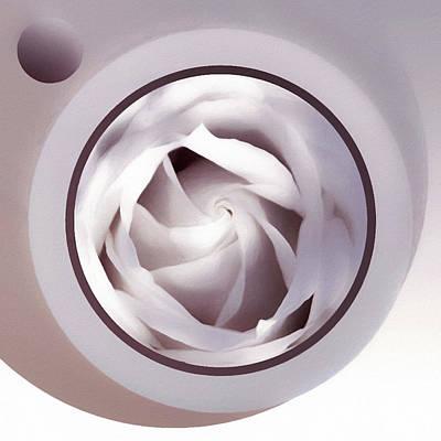 Anchor Down - Rose Moon by Susan Maxwell Schmidt