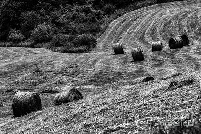 World War 2 Action Photography - Round Hay Bales in Black and White by Thomas R Fletcher