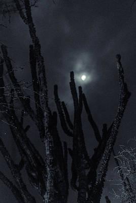 Impressionist Landscapes - Round Midnight by Alex Lapidus