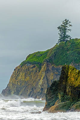 Hollywood Style - Ruby Beach Surf 2007 by Greg Reed