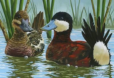 Painting - Ruddy ducks by Tony W Morgan