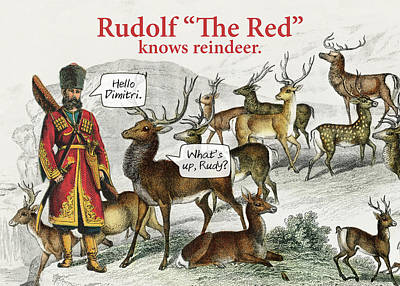 Photograph - Rudolf The Red by Steve Lockwood