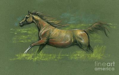 Animals Drawings - Running arabian horse 2020 11 05 by Angel Ciesniarska