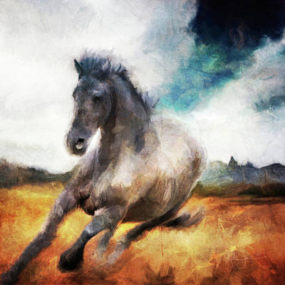 Animals Royalty-Free and Rights-Managed Images - Running Blue Roan by Katrina Jones
