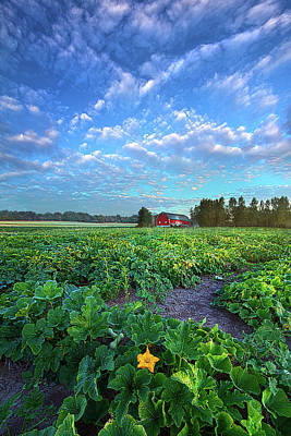 Royalty-Free and Rights-Managed Images - Rural Life by Phil Koch