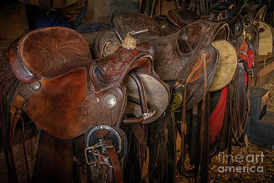 Keith Richards Royalty Free Images - Saddle Lineup Royalty-Free Image by Priscilla Burgers