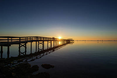 Amy Hamilton Animal Collage - Safety Harbor Pier Sunrise 2 by Joe Leone