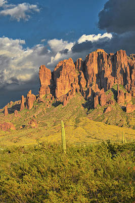 Michael Jackson - Saguaro Cactus and Superstition Mountains  by Chance Kafka