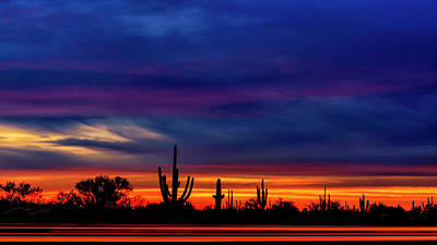 Mark Myhaver Photo Rights Managed Images - Saguaro Sunset V16 Royalty-Free Image by Mark Myhaver