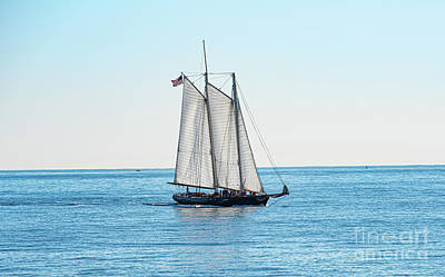 Photograph - Sailing Away by Debbie D Anthony