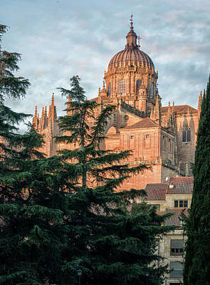Moody Trees Rights Managed Images - Salamanca Spain Cathedral Royalty-Free Image by Joan Carroll