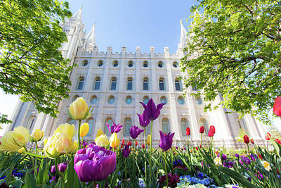 Photograph - Salt Lake Temple Flowers by Dallas Golden