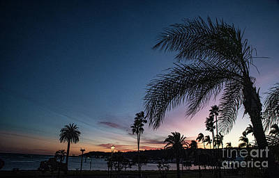 Photograph - San Diego Bay Sun Setting by Debbie D Anthony