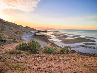 Moody Trees - San Felipe Sunset by Bonny Puckett